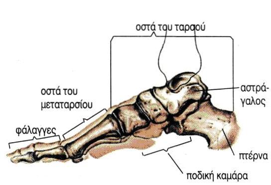 Μεταταρσαλγία Medica Feet